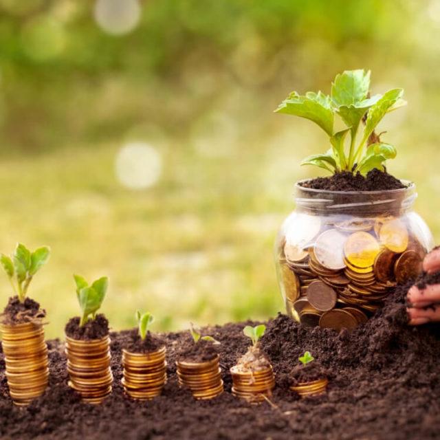 Ziele - Nachhaltig wirtschaften